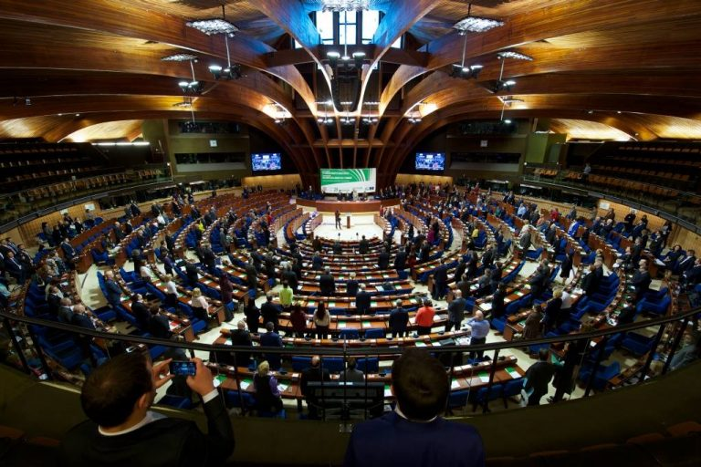Members of MoveIt as Youth Delegates in Council of Europe